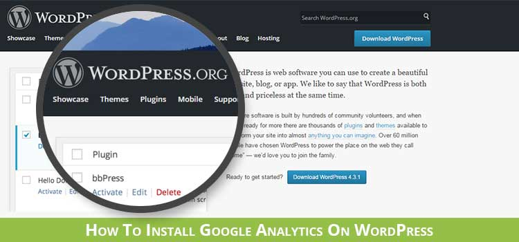 Installing Google Analytics on a self hosted WordPress website